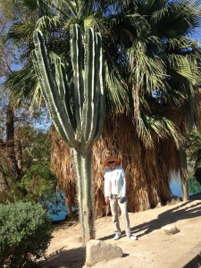 Me and the organ pipe cactus (I think).